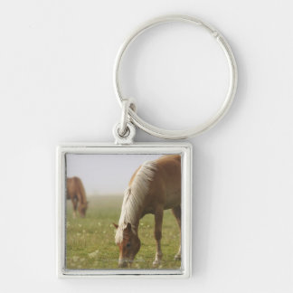 horses wildflower meadow morning mist Piano Keychain