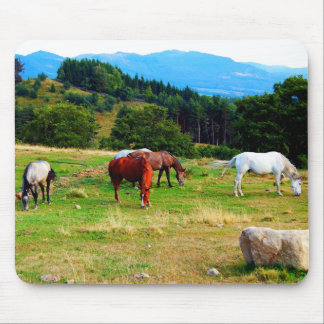 Horses Wildlife Mousepads