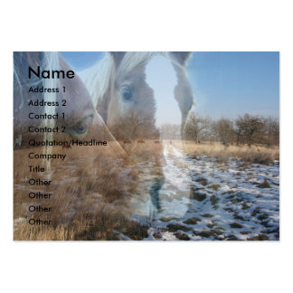 Horses Winter Greeting Business Card