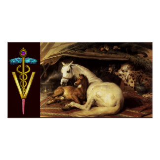 HORSES WITH GOLD CADUCEUS VETERINARY SYMBOL POSTERS