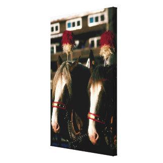 Horses with headdresses canvas print