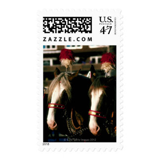 Horses with headdresses postage