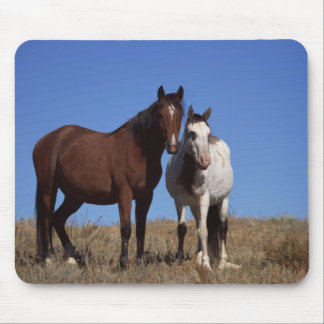 Horses with Sky Background Mouse Pad