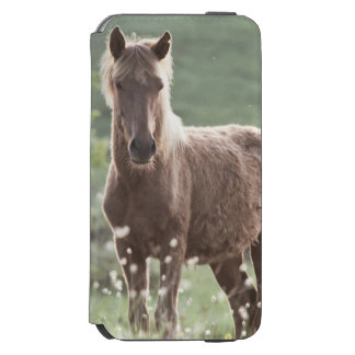 Horses Incipio Watson™ iPhone 6 Wallet Case