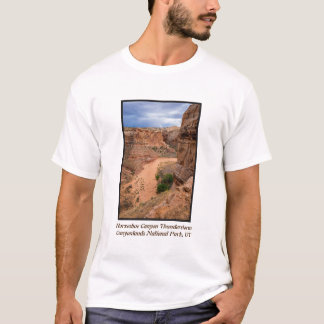 Horseshoe Canyon Thunderstorm - Utah T-Shirt