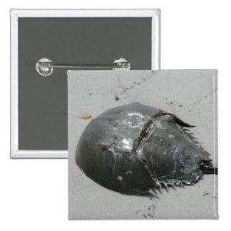 Horseshoe Crab 2 Inch Square Button