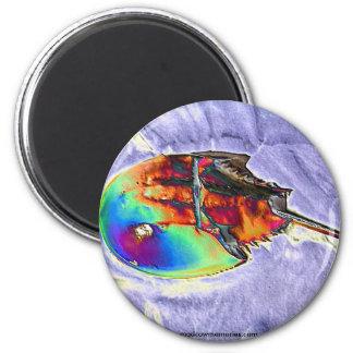 Horseshoe Crab Foil Design 2 Inch Round Magnet