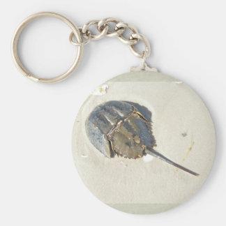 Horseshoe Crab Keychain