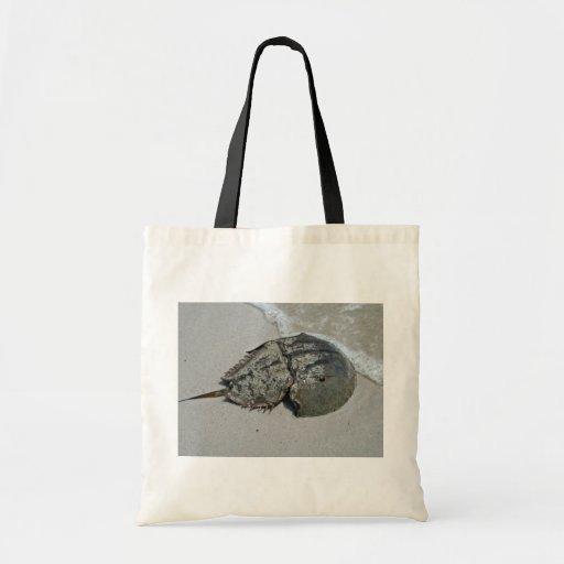 Horseshoe Crab - male Bag