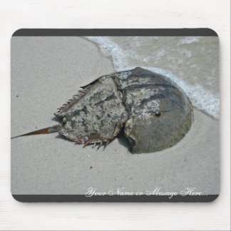 Horseshoe Crab - male Mouse Pad