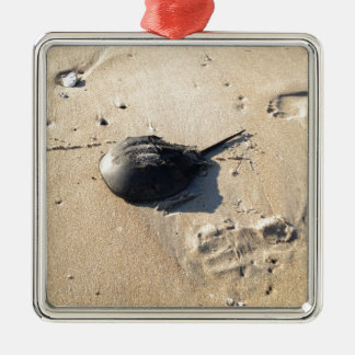 horseshoe crab square metal christmas ornament