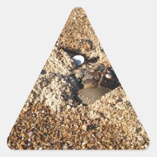 Horseshoe Crab Triangle Sticker