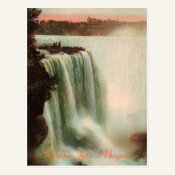 Horseshoe Falls at Niagara Postcard