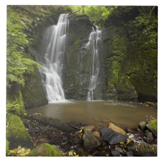 Horseshoe Falls, Matai Falls Ceramic Tiles