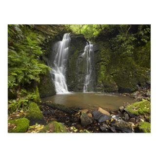 Horseshoe Falls, Matai Falls Postcard