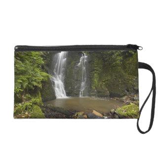 Horseshoe Falls, Matai Falls Wristlet Purse