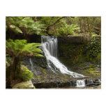 Horseshoe Falls, Mount Field National Park, Post Cards