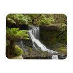 Horseshoe Falls, Mount Field National Park, Vinyl Magnet