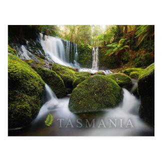 Horseshoe Falls Mt Field National Park Tasmania Postcards