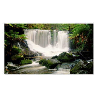 Horseshoe Falls Tasmania Australia Business Card