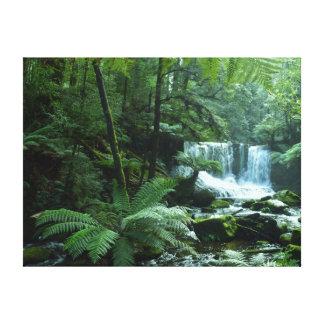 HORSESHOE FALLS TASMANIA AUSTRALIA CANVAS PRINT