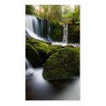 Horseshoe Falls Waterfall Business Card