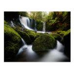 Horseshoe Falls Waterfall Postcard