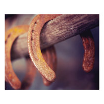 Horseshoes on Barn Wood Cowboy Country Western Flyer