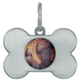 Horseshoes on Barn Wood Cowboy Country Western Pet Tag