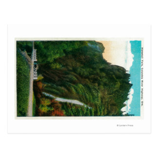 Horsetail Falls in Columbia River Gorge Postcard