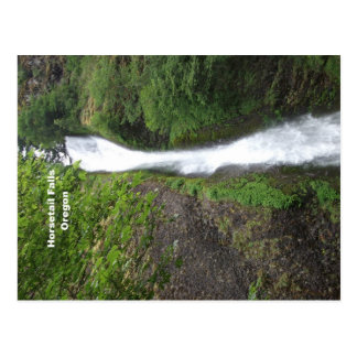 Horsetail Falls, Oregon Postcard