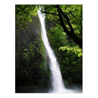 HorseTail Falls Postcard