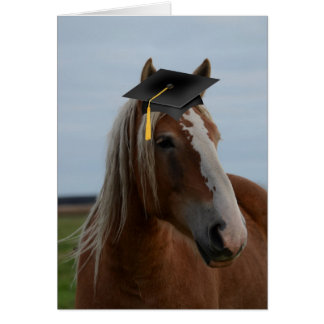 Horsey Graduation Greeting Card
