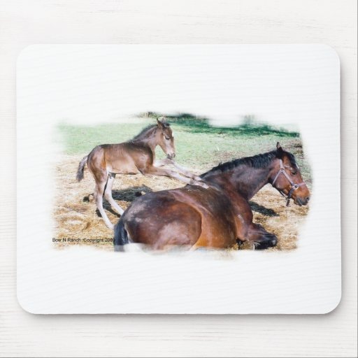 Horsey Humor, Saying Grace Mouse Pad