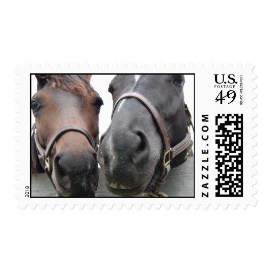 Horsey Love - Kisses Postage
