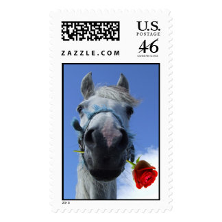 Horsey Love Postage