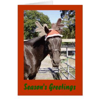 Horsey Season's Greetings Greeting Card
