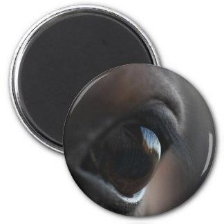 horseye copy magnet