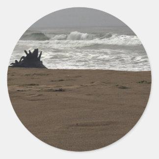 Horsfall Beach and Driftwood stump Classic Round Sticker