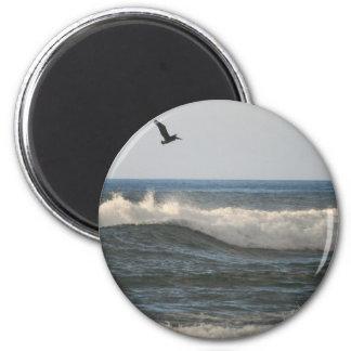 Horsfall Beach Pelican Magnet