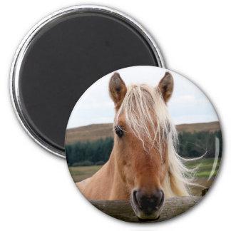 Horsie 2 Inch Round Magnet