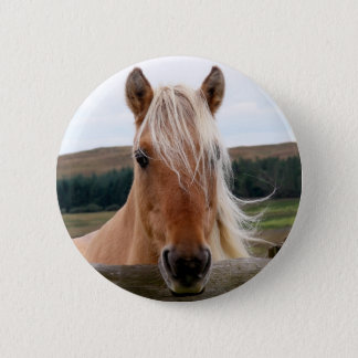 Horsie Button
