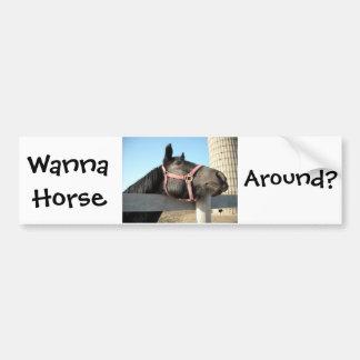 Horsing Around Bumper Sticker