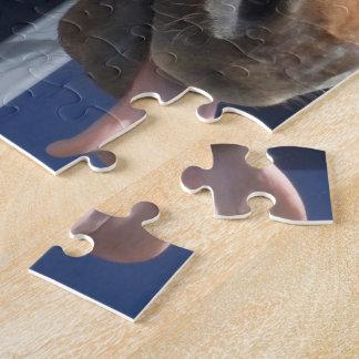 Horsing around - cheeky chestnut horse. jigsaw puzzle