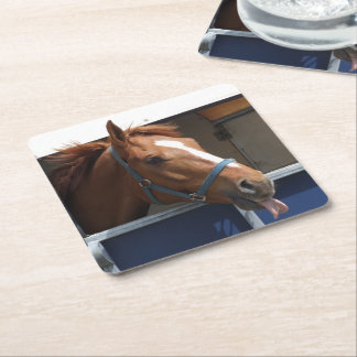 Horsing around - cheeky chestnut horse. square paper coaster