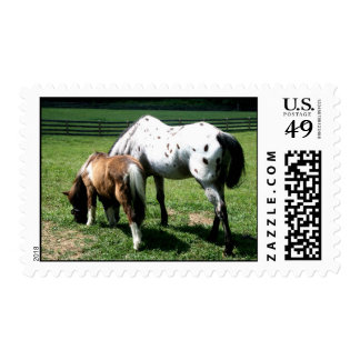 Horsing Around Stamp