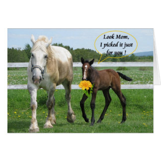Horsy Mother's Day Greeting Card
