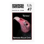 'Hortense' Turkey Vulture (2) Postage Stamp