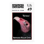 'Hortense' Turkey Vulture (2) Stamps