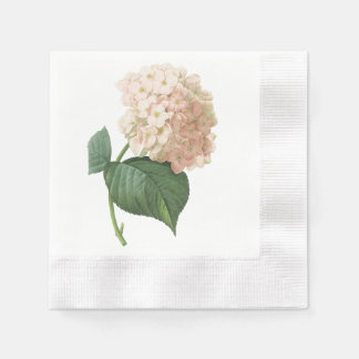 hortensia(Hydrangea sp.) by Redouté Coined Cocktail Napkin